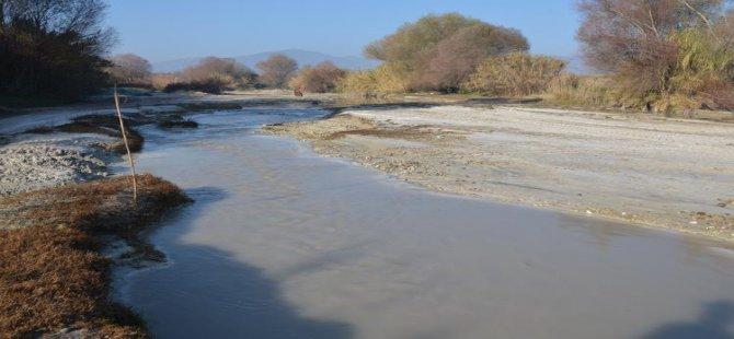 Aydın'da bu nehirden zehir akıyor!