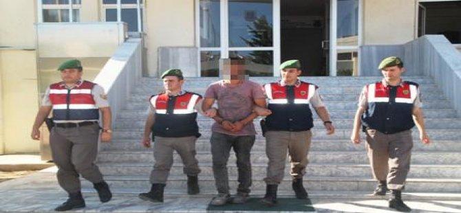 Didim'de terörist yakalandı