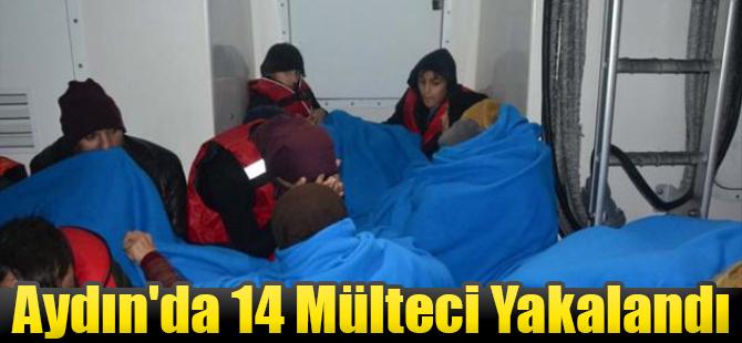 Aydın'da 14 Mülteci Yakalandı