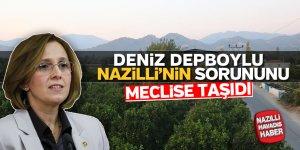 Deniz Depboylu Nazilli'nin sorununu meclisi taşıdı