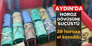 Aydın'da suçüstü yakalandılar
