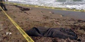 Balıkçılar denizde ceset buldu