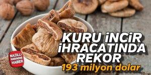 Kuru incir ihracatında rekor fiyat