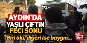 Aydın'da yaşlı çiftin feci sonu