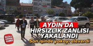 Aydın'da hırsızlık zanlısı tutuklandı