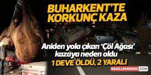 Buharkent'te korkunç kaza; 2 yaralı