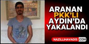 Aranan PKK'lı Aydın'da yakalandı