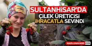 Sultanhisar'da çilek üreticisi ihracatla sevindi