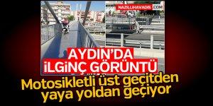 Aydın'da ilginç görüntü