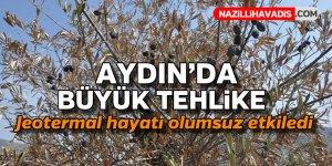 Aydın'da büyük tehlike !