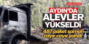 Aydın'da saman yüklü 2 kamyon alev aldı