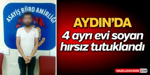 Aydın'da 4 hırsızlığa 1 tutuklama