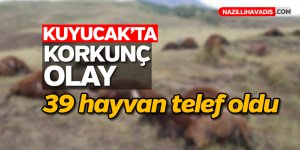 Kuyucak'ta 39 hayvan telef oldu