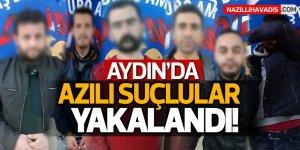 Aydın'da azılı hırsızlar  tutuklandı!