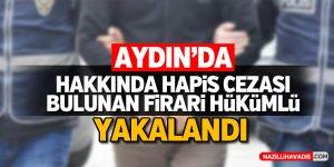 Aydın'da aranan firari hükümlü yakalandı