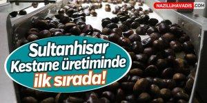 Sultanhisar kestane üretiminde Türkiye'de ilk sırada yer alıyor!