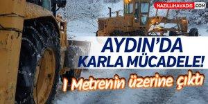 Aydın'da karla mücadele!