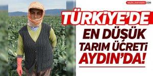 Türkiye'nin En düşük Tarım Ücreti Aydın'da!