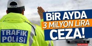 Aydın'da Bir Ayda 3 Milyon Lira Ceza!