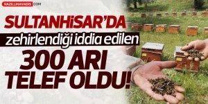 Sultanhisar'da 300 Arı Telef Oldu!
