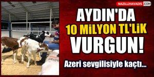 Aydın'da 10 milyon liralık vurgun
