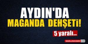 Aydın'da maganda dehşeti!