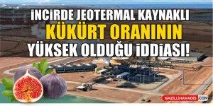 İncirde jeotermal kaynaklı kükürt oranının yüksek olduğu iddiası