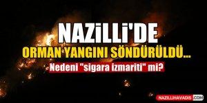 Nazilli'de orman yangın söndürüldü...