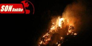 Nazilli'deki orman yangınını PKK üstlendi