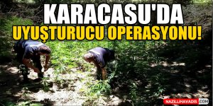 Karacasu'da Uyuşturucu Operasyonu!