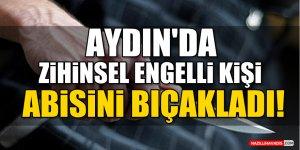 Aydın'da zihinsel engelli kişi ağabeyini bıçakladı