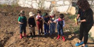 Öğrencilere sebze yetiştirme dersi