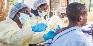 Koronavirüs ardından yeni salgın: Lassa Virüsü