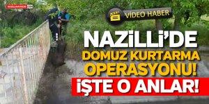 NAZİLLİ'DE NEFES KESEN DOMUZ KURTARMA OPERASYONU