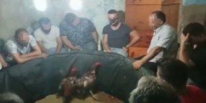 Nazilli polisinden horoz dövüştürenlere baskın