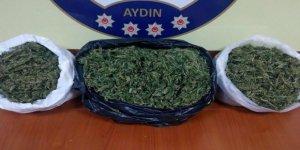 Sultanhisar'da uyuşturucu operasyonu!