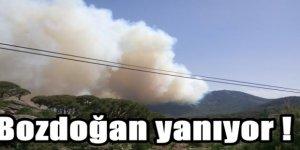 Bozdoğan'da dağda çıkan yangın mahalleye sıçradı!