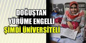 Şimdi Üniversiteli