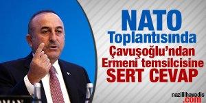 Bakan Çavuşoğlu'ndan Ermeni vekile sert cevap