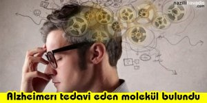 Alzheimerı Tedavi Eden Molekül Bulundu