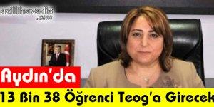 Aydın'da 13 Bin 38 Öğrenci Teog'a Girecek