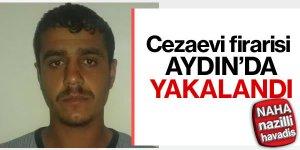Cezaevi firarisi Aydın'da yakalandı