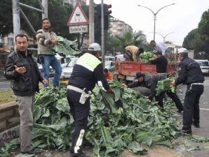 NAZİLLİ POLİSİ 'KARNIBAHAR' TOPLADI