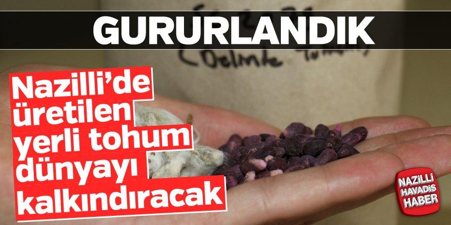 Nazilli'de üretilen yerli tohum Türkiye'yi kalkındıracak