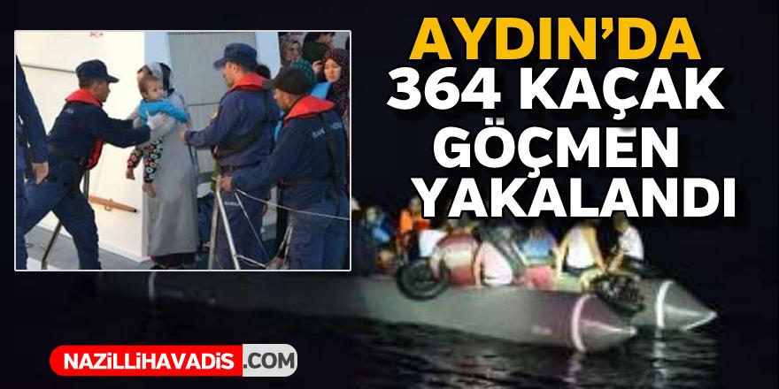 Aydın'da 364 kaçak göçmen yakalandı