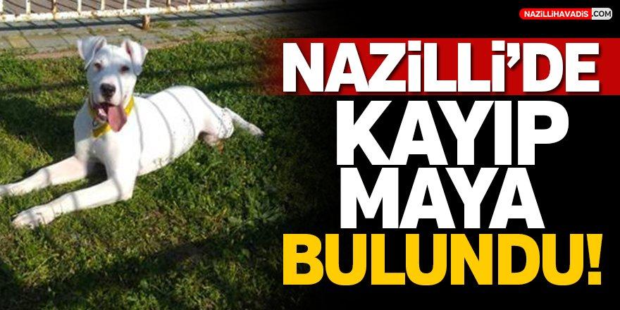 Nazilli'de Kayıp Maya Bulundu!
