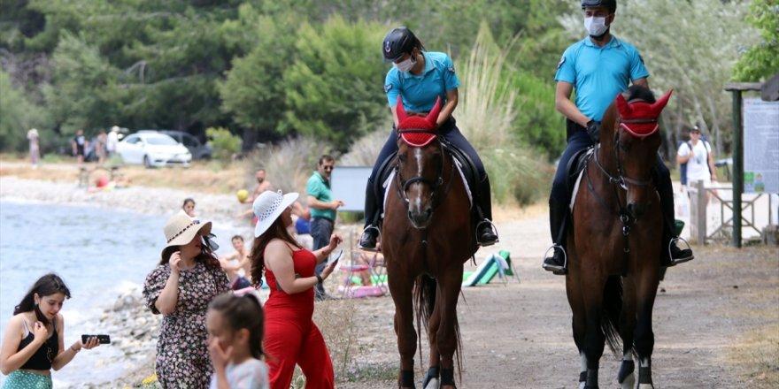 Kuşadası'ndaki milli parkta atlı tim göreve başladı