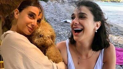 Kayıp üniversite öğrencisi Pınar Gültekin'in cesedi bulundu