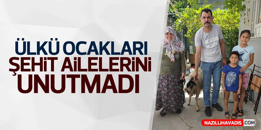 Aydın Ülkü Ocakları Şehit Ailelerine Kurban Dağıttı