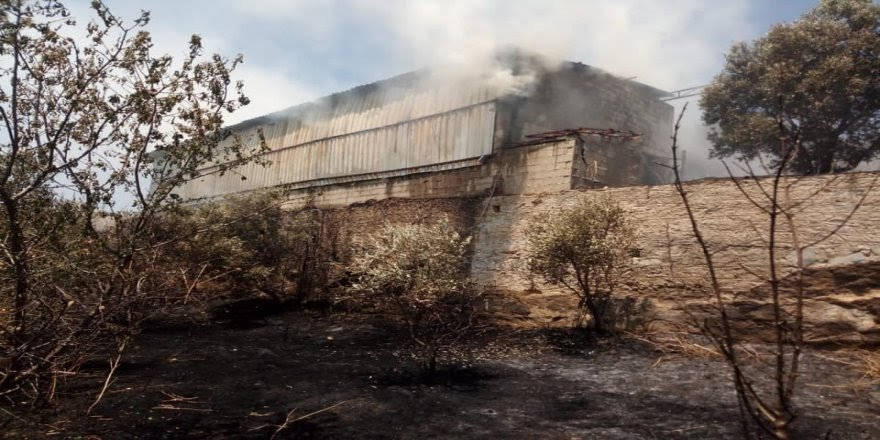 Aydın'da saman deposu alev alev yandı
